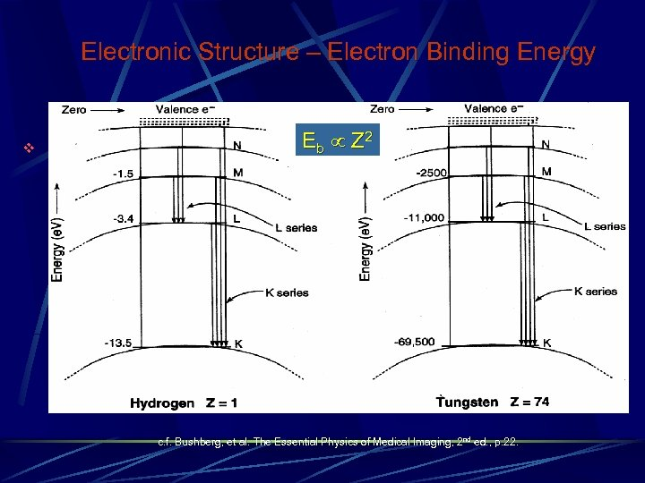 Electronic Structure – Electron Binding Energy v Eb Z 2 c. f. Bushberg, et