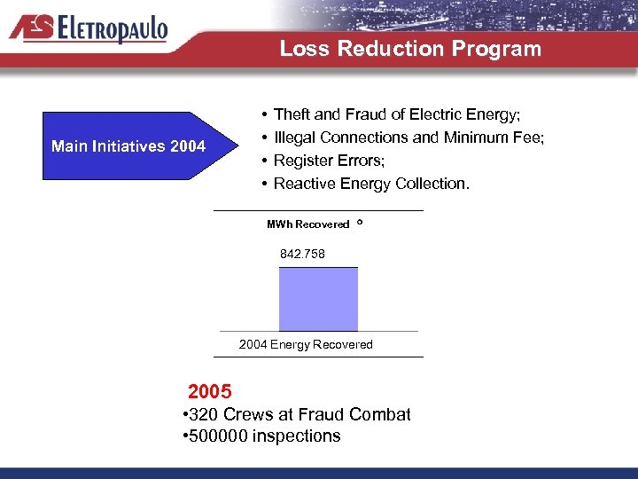 Loss Reduction Program Main Initiatives 2004 • • Theft and Fraud of Electric Energy;