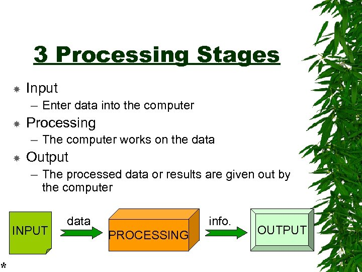 * 3 Processing Stages Input – Enter data into the computer Processing – The