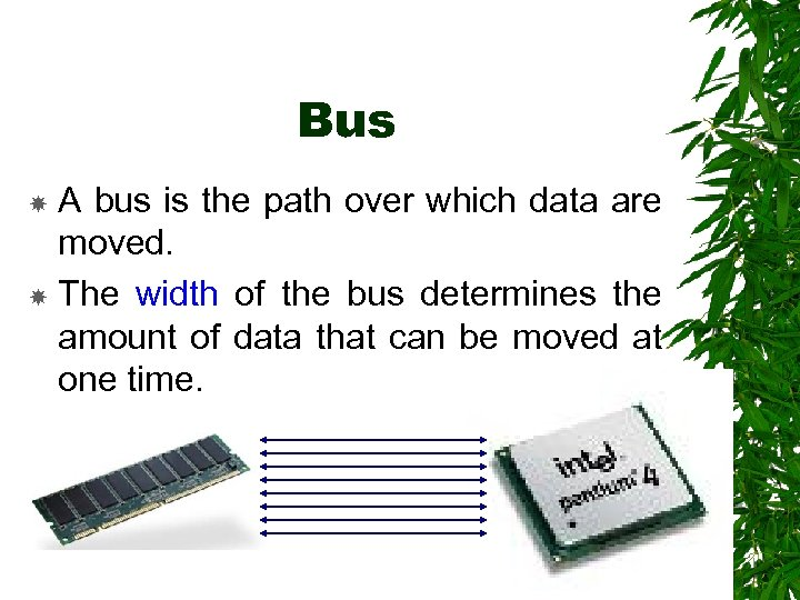 Bus A bus is the path over which data are moved. The width of
