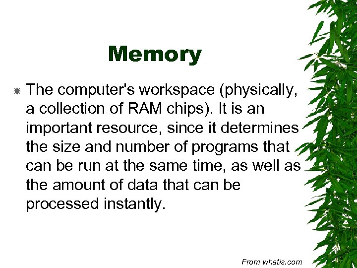 Memory The computer's workspace (physically, a collection of RAM chips). It is an important