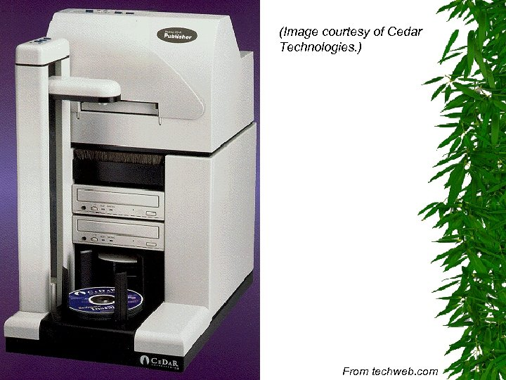(Image courtesy of Cedar Technologies. ) From techweb. com