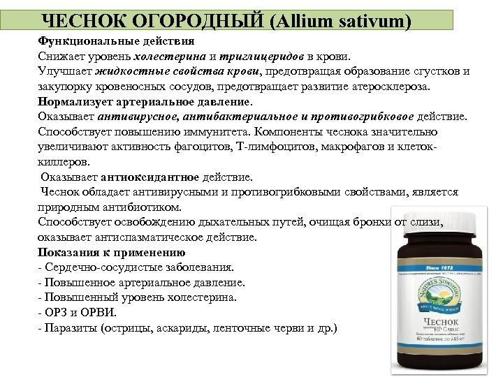 ЧЕСНОК ОГОРОДНЫЙ (Allium sativum) Функциональные действия Снижает уровень холестерина и триглицеридов в крови. Улучшает