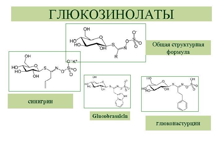 ГЛЮКОЗИНОЛАТЫ Общая структурная формула синигрин Glucobrassicin глюконастурцин