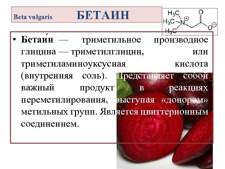Beta vulgaris БЕТАИН • Бетаи н — триметильное производное глицина — триметилглицин, или триметиламиноуксусная