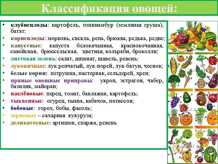 Классификация овощей: • клубнеплоды: картофель, топинамбур (земляная груша), батат; • корнеплоды: морковь, свекла, репа,