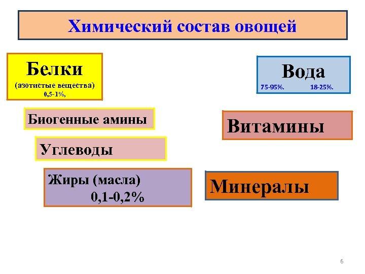Химический состав овощей Белки (азотистые вещества) 0, 5 -1%, Биогенные амины Вода 75 -95%.