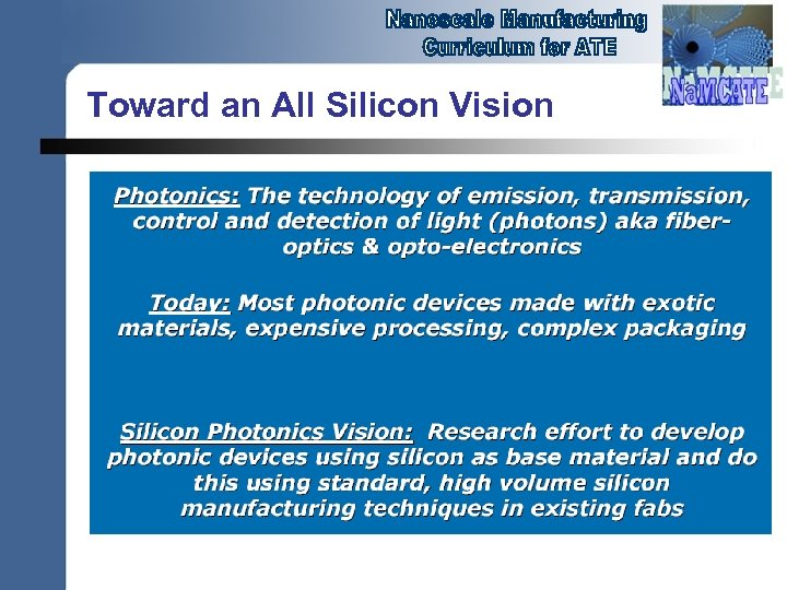 Toward an All Silicon Vision