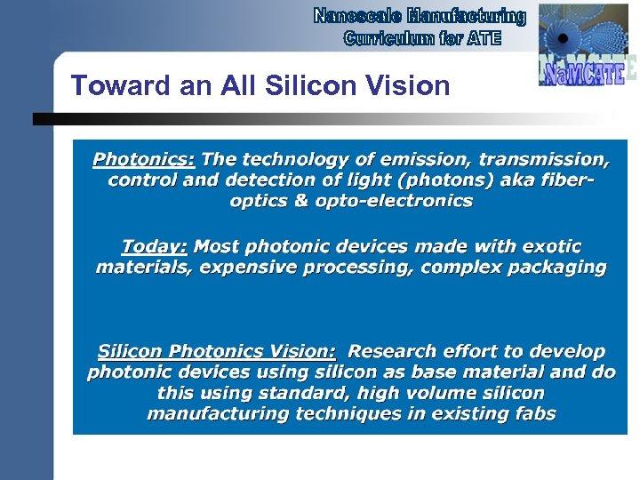 Toward an All Silicon Vision