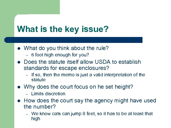 What is the key issue? l What do you think about the rule? –