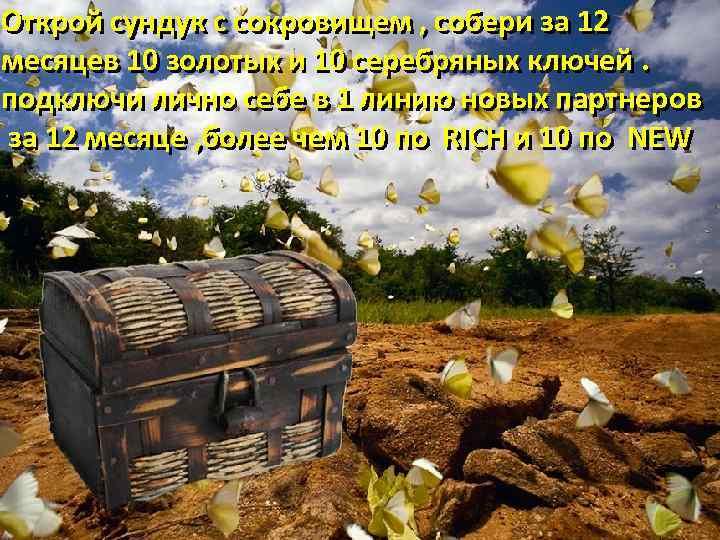 Открой сундук с сокровищем , собери за 12 месяцев 10 золотых и 10 серебряных