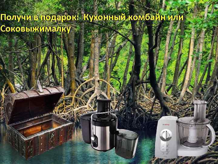 Получи в подарок: Кухонный комбайн или Соковыжималку