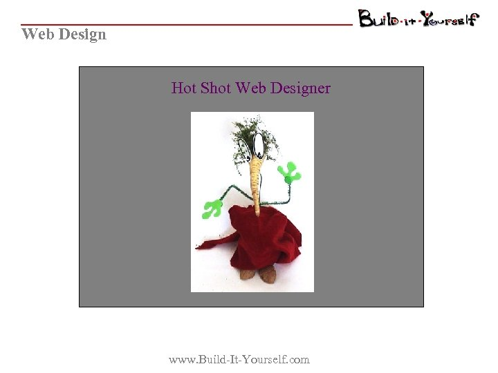 Web Design Hot Shot Web Designer www. Build-It-Yourself. com