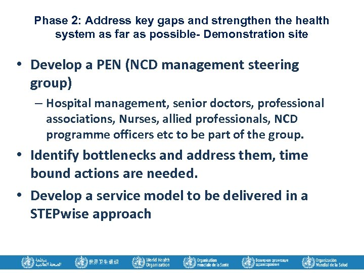 Phase 2: Address key gaps and strengthen the health system as far as possible-