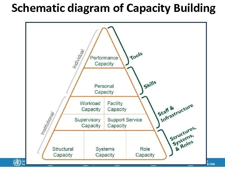 Schematic diagram of Capacity Building