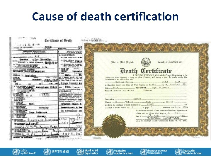 Cause of death certification