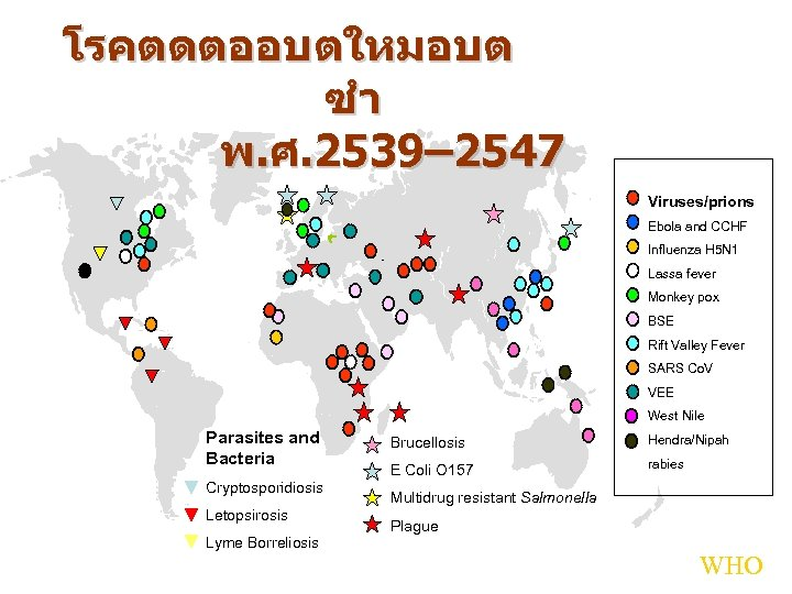 โรคตดตออบตใหมอบต ซำ พ. ศ. 2539– 2547 Viruses/prions Ebola and CCHF Influenza H 5 N