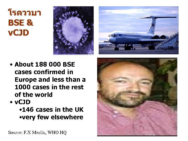 โรคววบา BSE & v. CJD • About 188 000 BSE cases confirmed in Europe