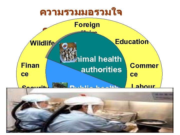 ความรวมมอรวมใจ Foreign ควบคมไขหวดนก affairs Education Wildlife Finan ce Security Animal health Commer authorities ce