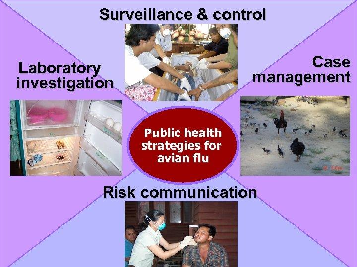Surveillance & control Case management Laboratory investigation Public health strategies for avian flu Risk
