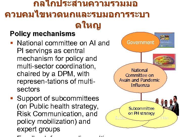 กลไกประสานความรวมมอ ควบคมไขหวดนกและรบมอการระบา ดใหญ Policy mechanisms § National committee on AI and PI servings as