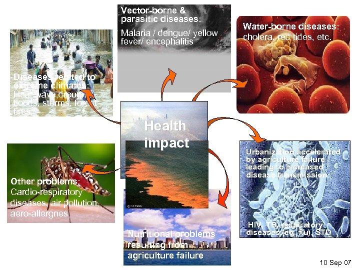 Vector-borne & parasitic diseases: Malaria / dengue/ yellow fever/ encephalitis Water-borne diseases: cholera, red