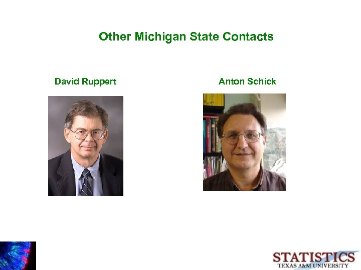 Other Michigan State Contacts David Ruppert Anton Schick