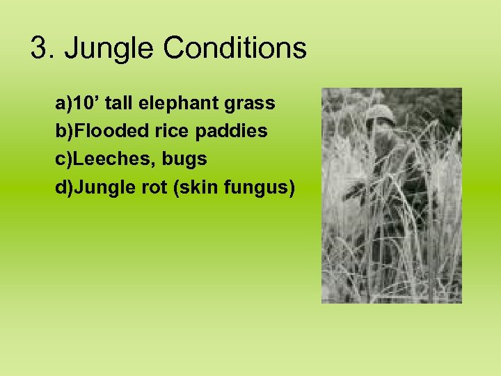 3. Jungle Conditions a)10' tall elephant grass b)Flooded rice paddies c)Leeches, bugs d)Jungle rot