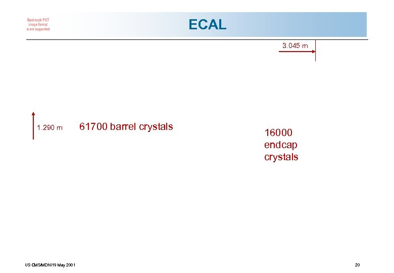 ECAL 3. 045 m 1. 290 m US CMS/MDN/19 May 2001 61700 barrel crystals