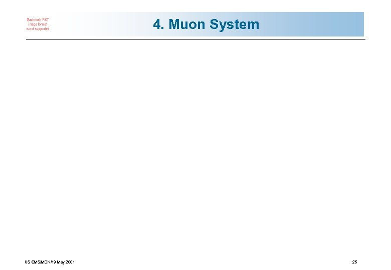4. Muon System US CMS/MDN/19 May 2001 25