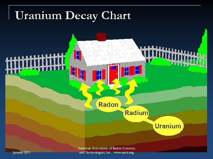 Uranium Decay Chart Radon Radium Uranium January 2011 American Association of Radon Scientists and