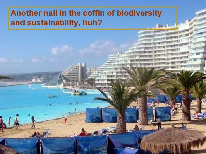 Another nail in the coffin of biodiversity and sustainability, huh?