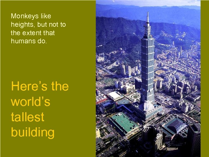 Monkeys like heights, but not to the extent that humans do. Here's the world's