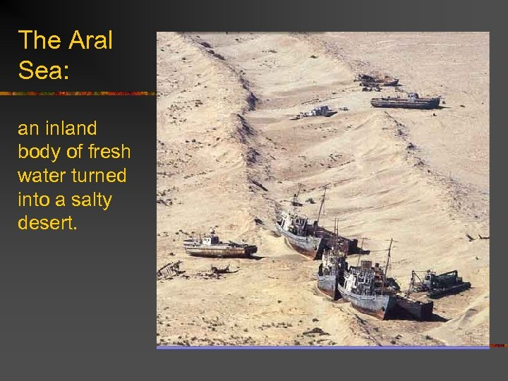 The Aral Sea: an inland body of fresh water turned into a salty desert.