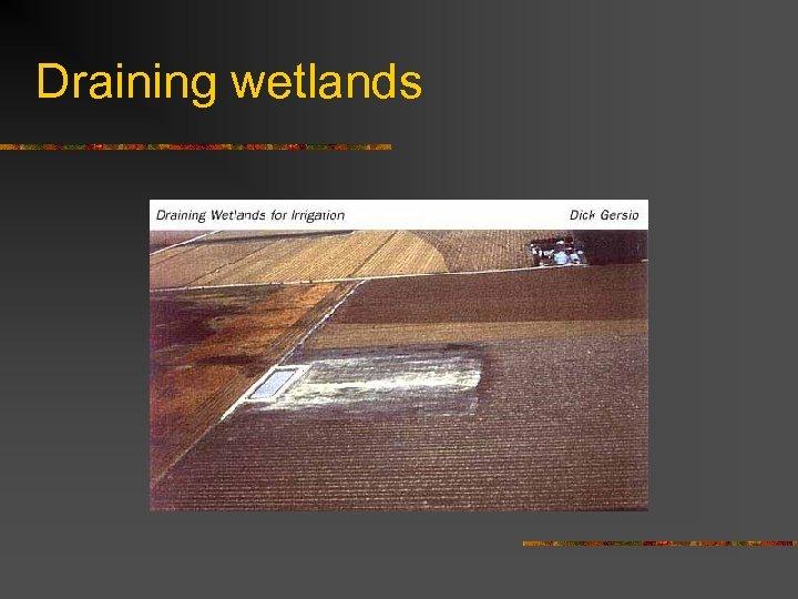 Draining wetlands