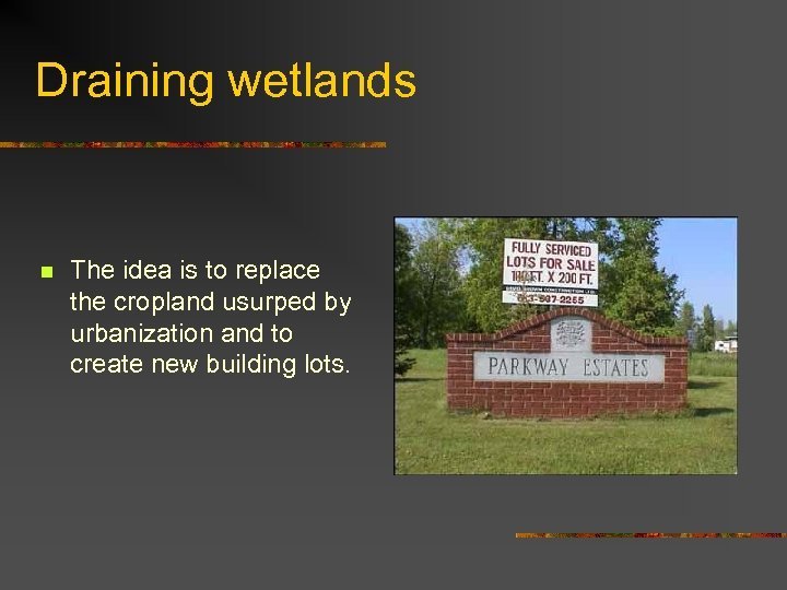 Draining wetlands n The idea is to replace the cropland usurped by urbanization and