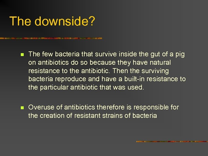 The downside? n The few bacteria that survive inside the gut of a pig