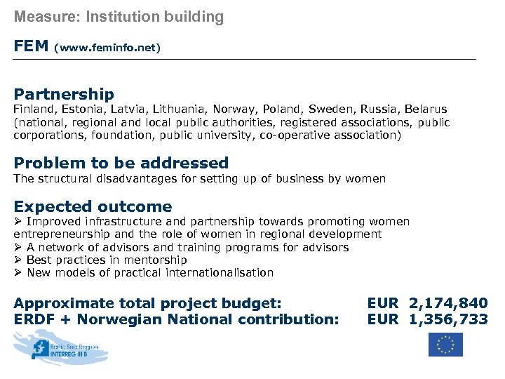 Measure: Institution building FEM (www. feminfo. net) Partnership Finland, Estonia, Latvia, Lithuania, Norway, Poland,