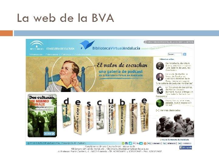 La web de la BVA