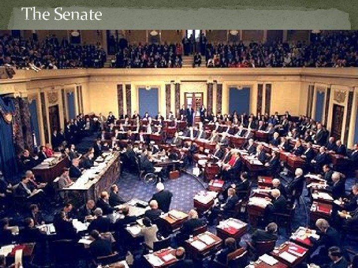 The Senate