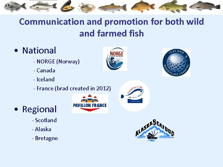 Communication and promotion for both wild and farmed fish • National - NORGE (Norway)