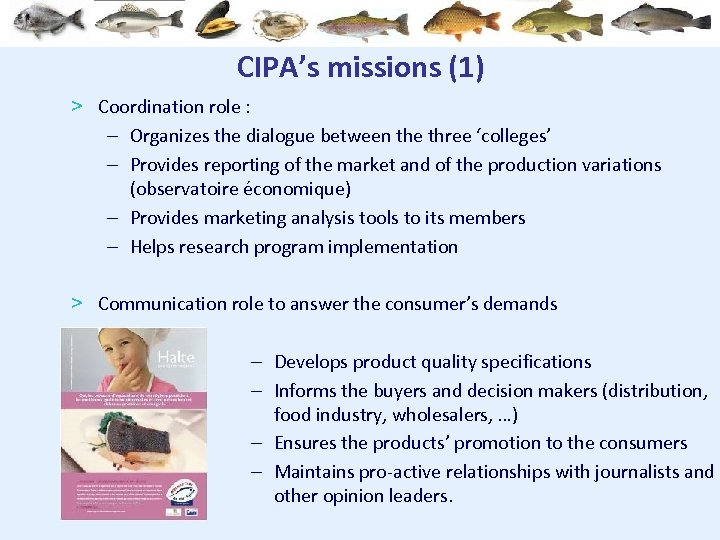 CIPA's missions (1) > Coordination role : – Organizes the dialogue between the three
