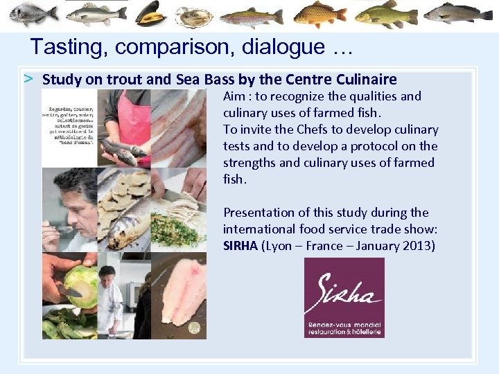 Tasting, comparison, dialogue … > Study on trout and Sea Bass by the Centre