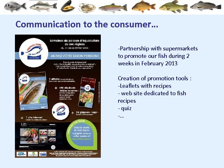 Communication to the consumer… -Partnership with supermarkets to promote our fish during 2 weeks