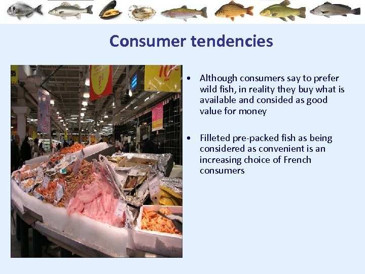 Consumer tendencies • Although consumers say to prefer wild fish, in reality they buy