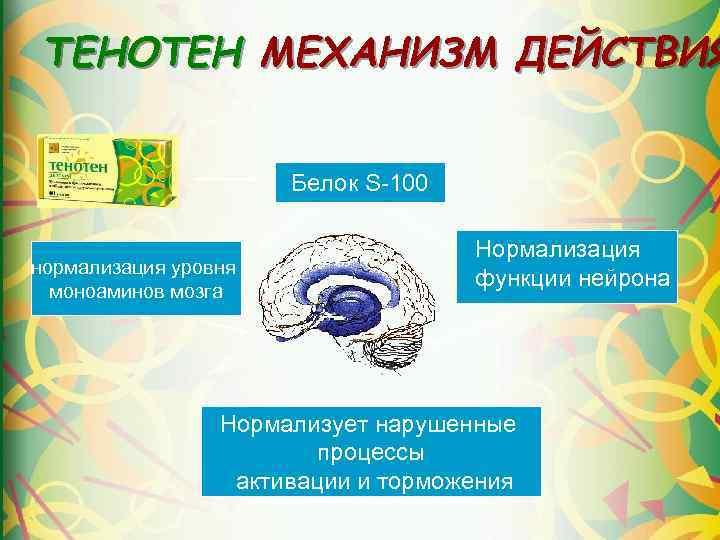 ТЕНОТЕН МЕХАНИЗМ ДЕЙСТВИЯ Белок S-100 нормализация уровня моноаминов мозга Нормализация функции нейрона Нормализует нарушенные