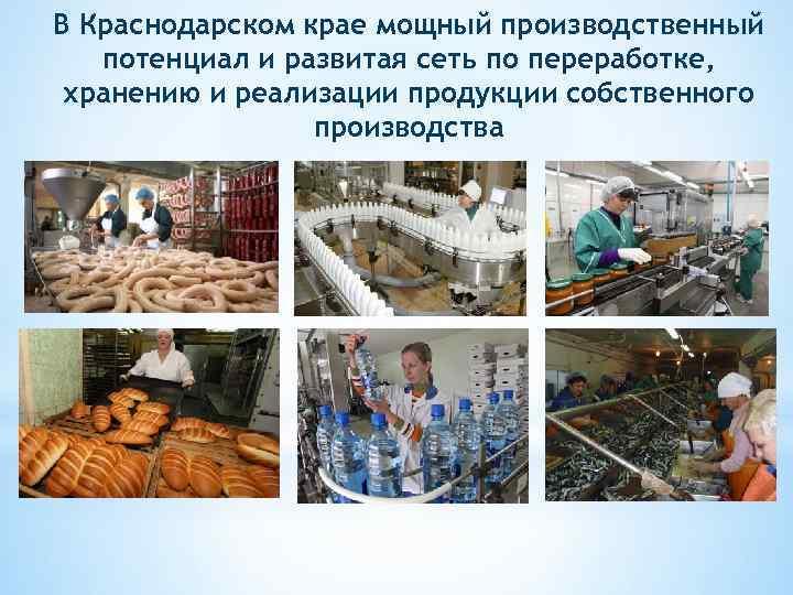 В Краснодарском крае мощный производственный потенциал и развитая сеть по переработке, хранению и реализации