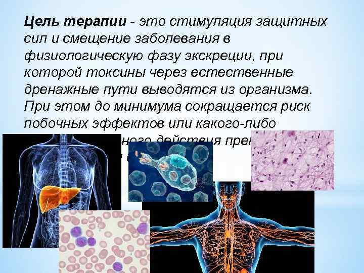 Цель терапии - это стимуляция защитных сил и смещение заболевания в физиологическую фазу экскреции,
