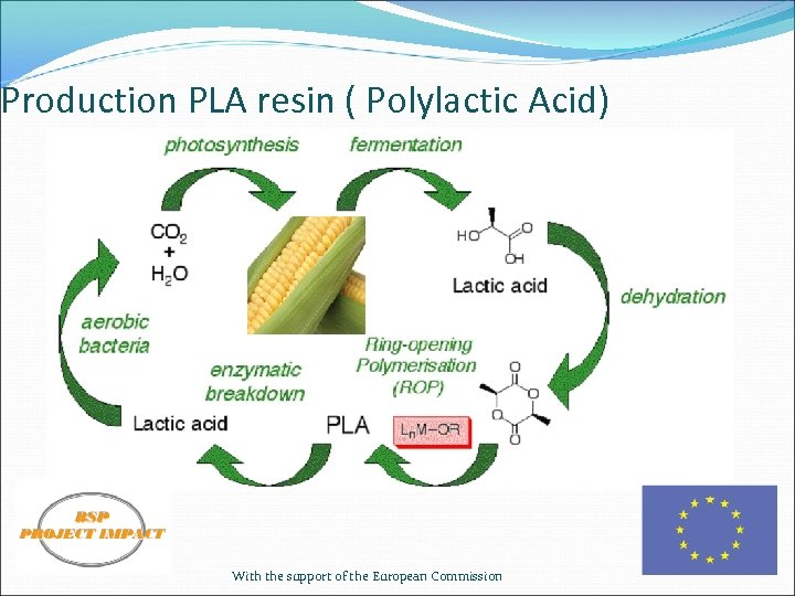 Production PLA resin ( Polylactic Acid) With the support of the European Commission