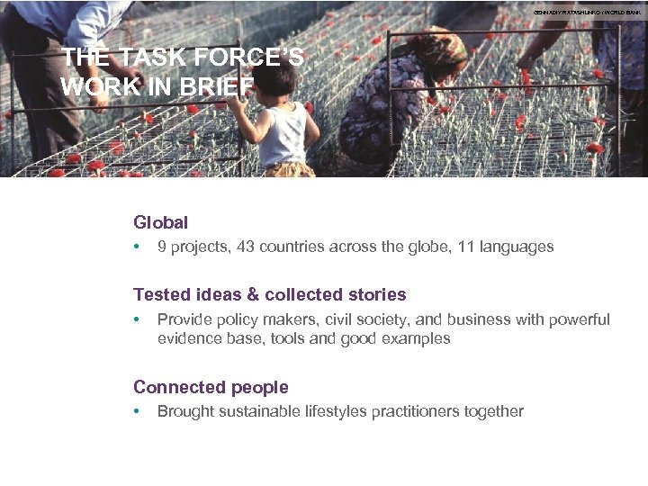 GENNADIY RATASHUNKO / WORLD BANK THE TASK FORCE'S WORK IN BRIEF Global • 9